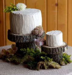 Tree Trunk Cake Stands - Woodsy Home Decor, Rustic Decor, Moss, Natural Wood, Woodlands, Earthy, Neutral, Wood, Enchanted Forest, Nature Inspired Decorating Ideas, Branches, Organic, Tree Trunk Stump, Logs, Grapevine, Lush Greenery, Plants, Vines, Succulent Garden, Jute, Birch Bark, Twigs, Willow