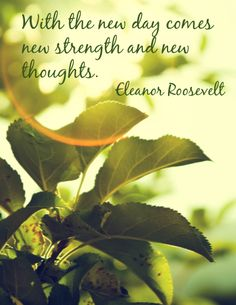 This is an inspirational poster featuring a quote by Eleanor Roosevelt. It can be used to decorate a classroom, motivate students, or simply to share with and encourage fellow educators!