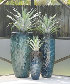 Indoor Container Gardening Silver bromeliads are planted in these beautiful blue pots. See over 1000 images… - Outdoor Plants, Air Plants, Potted Plants, Container Plants, Container Gardening, Garden Pots, Vegetable Garden, Large Plant Pots, Backyard Pool Landscaping