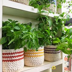 Macetas hechas con envases plasticos de agua cubiertos en crochet. Muy lindos. Y el blog, excelente>>> Agulhas e pinceis