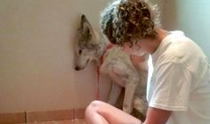 Stray 'Dog' Was Too Scared To Leave The Corner —Until He Met Another Of His Kind