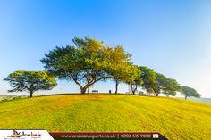 Aspire Park, Doha |  #Aspire #Park is a park located in Aspire Zone, #Doha, #Qatar.  |  🔶 Source: https://en.wikipedia.org/wiki/Aspire_Park  |  🔷 Book Now: http://www.arabianexperts.co.uk/destinations/qatar/doha?utm_source=pinterest&utm_campaign=aspire-park-in-doha&utm_medium=social&utm_term=doha  |  #tourism #flights #travel #middleeast #travelling #travelphotography #travelmiddleeast #travelblog #traveldiaries #booknow #bookonline #cheapflights #travelagentsinuk #arabianexperts