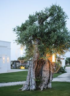 If you're visiting Italy and wondering where to stay in Puglia, look no further than Masseria San Francesco. I have had my eye on Masseria San Francesco Road Trip Europe, Best Of Italy, Cute Cafe, Natural Swimming Pools, Living In Italy, White Building, Tuscan House, Southern Italy, Visit Italy