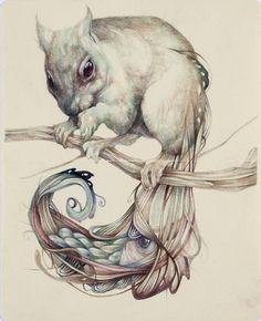 coloured pencil illustration by marco mazzoni