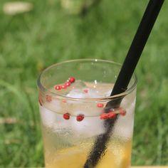 #drink #vodka #tônica #bebida #food #Foodphotography #passoapasso