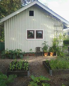 1950s House, Dream Garden, Garden Ideas, Shed, Cottage, Outdoor Structures, Landscape, Lifestyle, Home