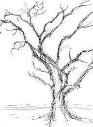 leafless walnut tree - Google Search