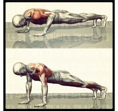 The 10 Day Push-up Challenge (Intermediate to Advanced Fitness) at http://www.konkura.com/challenge/?uid=fde8dda2-dd3c-461e-ae81-6b63490933b2&t=The+10+Day+Push-up+Challenge+Intermediate+to+Advanced+Fitness