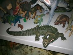 A new add to my collcection, Mojo Sarcosuchus