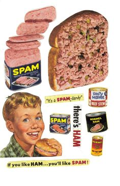 Can you believe that these images were once used to SELL a product? Spam is scary enough as it is, but that sandwich spread made with spam and chopped pickles makes my tummy turn. From a June 1953 edition of Companion magazine. Spam Recipes, Retro Recipes, Vintage Recipes, Retro Advertising, Old Advertisements, Retro Ads, Healthy Eating Tips, Healthy Nutrition, Canned Meat