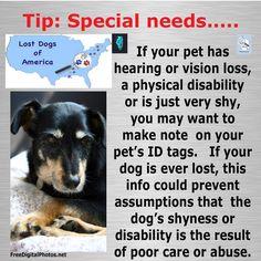 For more tips visit our website http://www.lostdogsofamerica.org