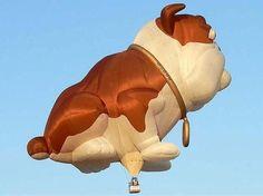 ilginc-balonlar-203.jpg (550×412)