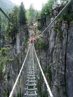 Beautiful Landscape Photography, Beautiful Landscapes, Slovenia Travel, Forest Adventure, Lake Bled, Suspension Bridge, Visit Italy, Like A Local, Bungee Jumping