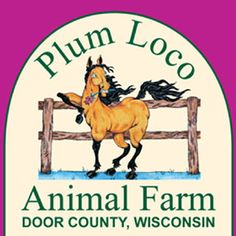 Plum Loco Animal Farm | Activities-Group, Animals, Attraction, Just for Kids
