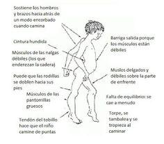 BIOLOGÍA, CULTURA CIENTÍFICA: GEN JAGGED 1: POSIBLE DIANA PARA EL TRATAMIENTO DE...