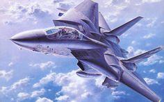 Airplane Car, F-14 Tomcat, Hobby Kits, Fun World, Military Jets, Aviation Art, World History, Box Art, Fighter Jets