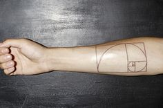 I don't much care for tattoos; but if you're going to do it, make it geeky. Golden Ratio tattoo!
