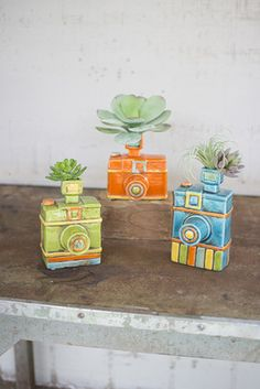 "This set of quirky bud vases features three colorful camera designs that will show off your air plants or short stem flowers with funky charm. largest is 4"" x 4"" x 8""tone of each design"