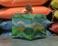 Paisajes decorativos con arenas de colores.  #Terrarios #Suculentas #Suculovers #Terrarium