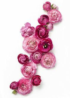 Pink flower arrangement | beautiful flowers | Flower Power | Floral Love | Flora