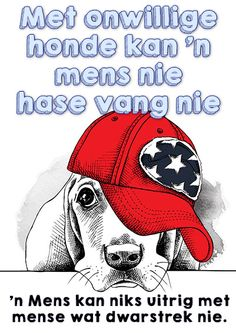 onwillige honde mens hase vang hoezit idioom Afrikaanse Quotes, My Journal, Idioms, Life Lessons, Wise Words, Haha, Language, Jokes, Teaching
