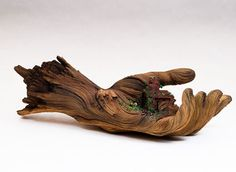 Sculptural Art This stunning ceramic hand sculpture created by artist and ceramicist Christopher David White looks exactly like old wood. More images of the ceramic sculpture on WE AND THE. Hand Sculpture, Sculptures Céramiques, Ceramic Sculptures, Tree Sculpture, Growth And Decay, Tree Carving, Wooden Hand, Wooden Tree, Ceramic Artists