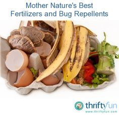 Mother Natures Best Fertilizers and Bug Repellents