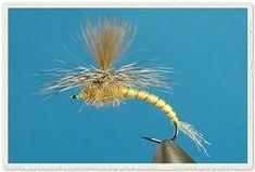 mayfly emerger