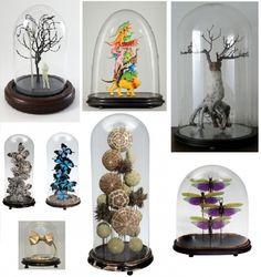 Avoir un petit musée chez soi, c'est possible grâce aux cabinets de curiosités. Voici quelques astuces et inspirations pour vous lancer.