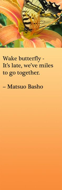 Wake butterfly – It's late, we've miles to go together. -- Matsuo Basho, japanese haiku poet and master. The greatest man that Japan has ever produced. Japanese Haiku, Japanese Poem, Grand Tour, Forms Of Poetry, Miles To Go, Short Poems, Writing Poetry, Interesting Quotes, True Words
