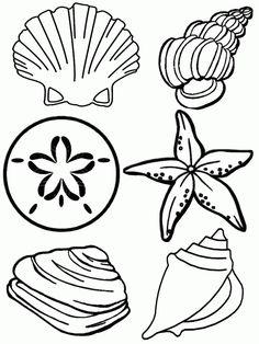 Seashells Coloring Pages | 99coloring.com
