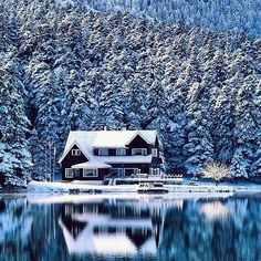 House; Home; woods; cabin;