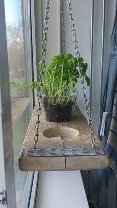 My hanging herb garden, kitchen window