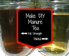 DIY Manure Tea – Putting Manure to Work in Your Garden.this is a great way to use manure from horses that eat Bermuda hay. You get the fertilizing effects of the manure without the invasive seeds of the Bermuda grass. Strawbale Gardening, Organic Gardening Tips, Vegetable Gardening, Organic Compost, Veggie Gardens, Planting Vegetables, Urban Gardening, Urban Farming, Organic Farming