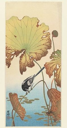 Ohara Koson, Wagtail and Lotus, between 1912 and 1918, woodblock print, 37.7 × 16.4 cm. Brooklyn Museum
