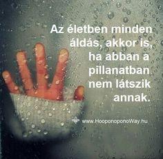 Hálát adok a mai napért. Az életben minden áldás, akkor is, ha abban a pillanatban nem látszik annak. Isten semmi olyat nem ad, ami ne segítene fejlődni, gyógyulni, tanulni. Ú az egyetlen, aki pontosan tudja, mire van szükséged. Így szeretlek, Élet!  Köszönöm. Szeretlek ❤  ⚜ Ho'oponoponoWay Magyarország ⚜ Spirit, Motivation, Happy, Quotes, Life, Quotations, Ser Feliz, Quote, Shut Up Quotes