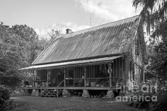 Florida Cracker Farmhouse by Lynn Palmer - Florida Cracker Farmhouse Photograph - Florida Cracker Farmhouse Fine Art Pr. Old Florida, Vintage Florida, Florida Home, Florida Trees, Abandoned Houses, Abandoned Places, Farmhouse Photographs, Cracker House, Cabins And Cottages