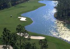Top Rated Golf Course Burnt Pine Golf Course in SoWal at Sandestin, FL Florida Golf Courses, Best Golf Courses, Golf Course Reviews, Beach Scenes, Golf Clubs, Things To Do, Top Rated, Pine, Places