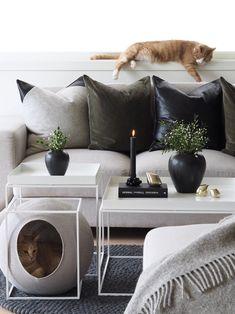 Living Room Inspiration for Minimalist Interiors