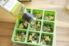 Frozen Herb Starters Filling with Rosemary Oil