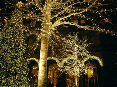 COMMERCIAL CHRISTMAS LIGHT INSTALLATION As you may already know, decorative banners, displays, and festive lighting attract a great deal of attention to retail centers, commercial buildings, city boulevards, etc. and also dramatically increase the visibility of buildings. Let us help you maximize your Christmas Décor budget this year while at the same time creating a winter wonderland for people to enjoy. Our Christmas decor experts will transform your shopping center, strip .