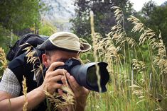 How Much Money Does A Wildlife Photographer Make  Photography