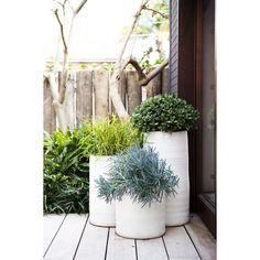 Robert Plumb Bondi Planter. Australian made terracotta pots. Photo also found here: http://inadesignerhome.com.au/nikki-bella-mumma/