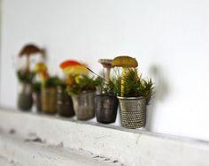 the smallest garden ever