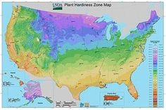 What Is Your USDA Plant Hardiness Zone?