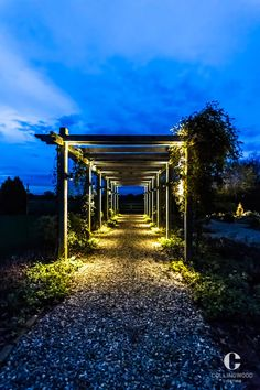 LED lighting from Collingwood enhances architecture and landscapes with long life, energy efficient illumination. Master light with the leaders in integrated LED lights Landscape Lighting, Outdoor Lighting, Garden Lighting Inspiration, Energy Efficient Lighting, Walkway, Landscape Design, Wall Lights, Vinci, Lighting Design