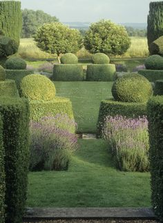 topiary / garden design / repinned on toby designs