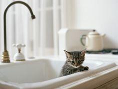 bath time! ☺️