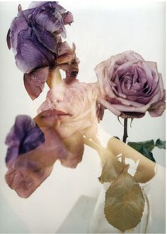 Face in the flowers