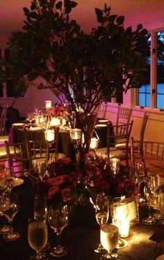 Splendid Stems Floral Designs | Albany Wedding Flowers | Saratoga Wedding Flowers | Bridal Florist  Branch Centerpiece